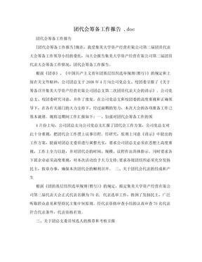 团代会筹备工作报告 .doc