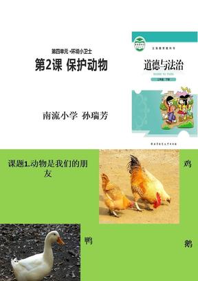 《保护动物》ppt课件