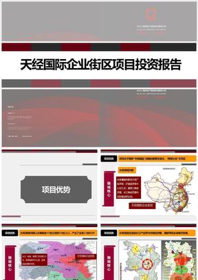 湖南长沙天经国际企业街区项目投资报告 ppt课件