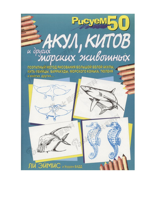 50种海洋动物画法