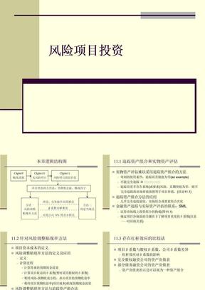 风险项目投资(ppt15)(1)