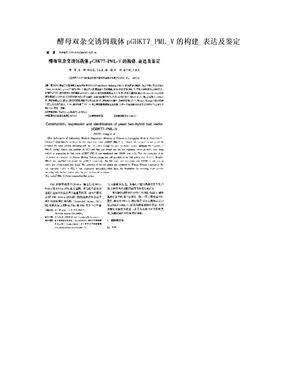 酵母双杂交诱饵载体pGBKT7_PML_V的构建_表达及鉴定