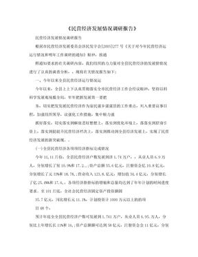 《民营经济发展情况调研报告》