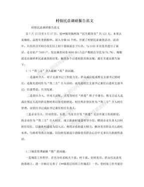 村情民意调研报告范文