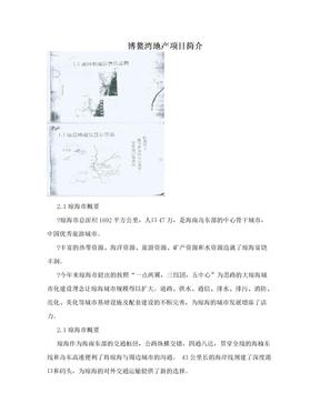 博鳌湾地产项目简介
