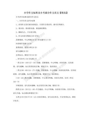 小学作文标准及小考满分作文范文【精选】