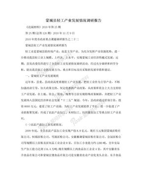 蒙城县轻工产业发展情况调研报告