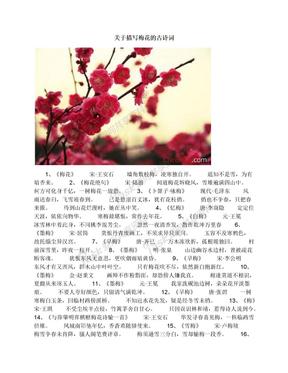 关于描写梅花的古诗词