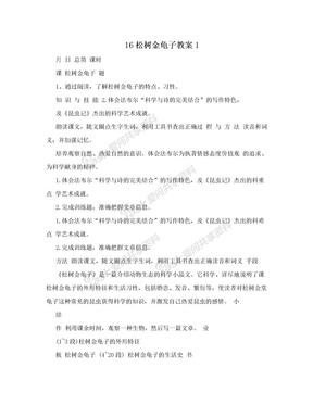 16松树金龟子教案1