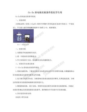 Cu-Zn原电池实验条件优化学生用