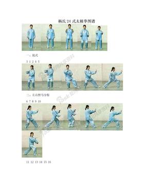 杨氏24式太极拳图谱