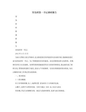 望凫村第一书记调研报告