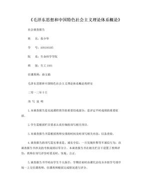 毛泽东思想和中国特色社会主义理论体系概论实践报告书