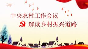 中央农村工作会议党课学习ppt模板