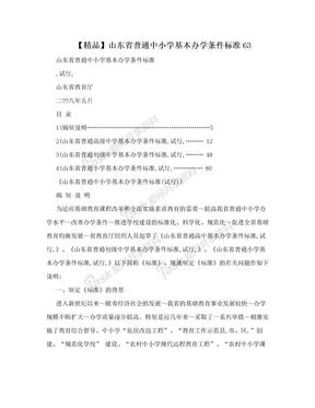 【精品】山东省普通中小学基本办学条件标准63