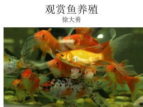 观赏鱼发展史