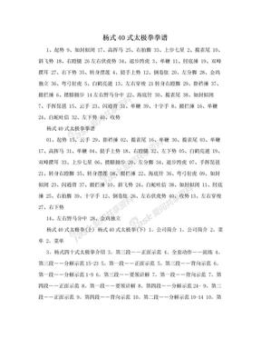 杨式40式太极拳拳谱