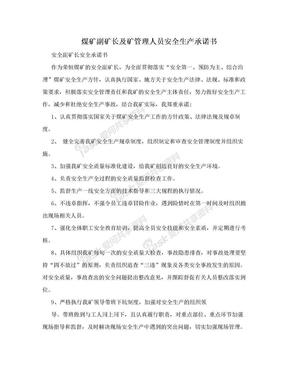 煤矿副矿长及矿管理人员安全生产承诺书