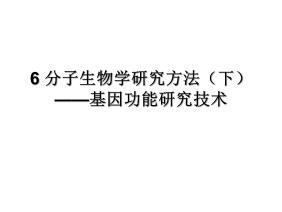 6_分子生物学研究方法(下)2