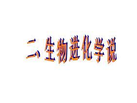 浙教版生物进化ppt课件