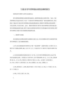 宁波市青年律师执业状况调研报告