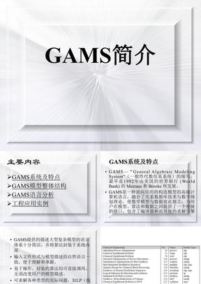 GAMS_软件介绍