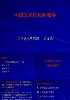 中国武术段位制概要(PPT)