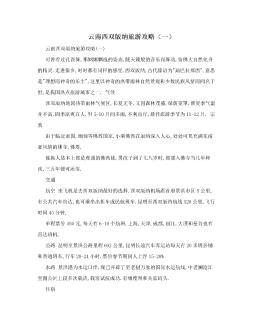云南西双版纳旅游攻略(一)