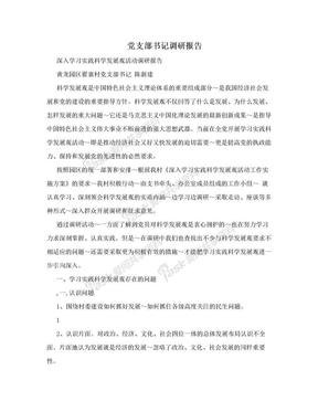 党支部书记调研报告