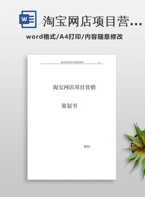 淘宝网店项目营销策划书