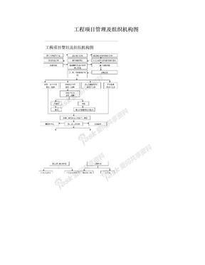 工程项目管理及组织机构图