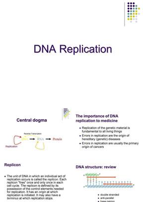 分子生物学课件-DNA复制