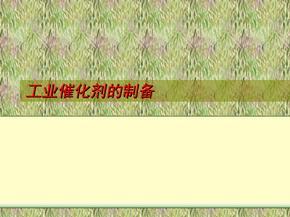 工业催化剂的制备 (1)
