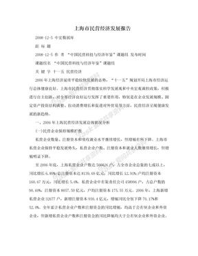 上海市民营经济发展报告