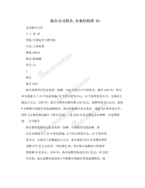 海尔公司简介,企业结构图 03