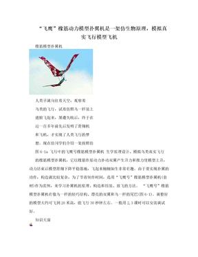 """""""飞鹰""""橡筋动力模型扑翼机是一架仿生物原理,模拟真实飞行模型飞机"""