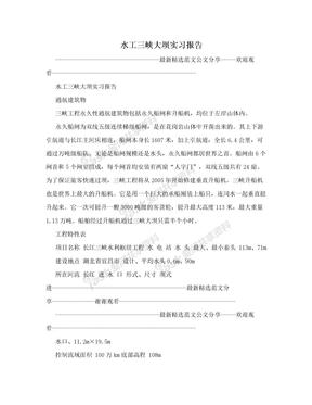 水工三峡大坝实习报告