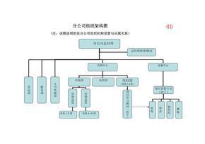 分公司组织架构图