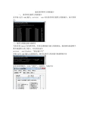 如何查看程序占用的端口