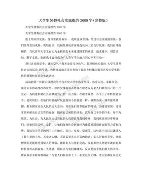 大学生暑假社会实践报告3000字(完整版)