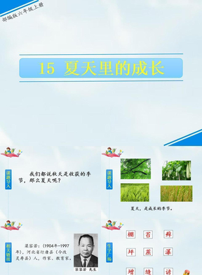最新部编版六年级语文上册课件《夏天里的成长》