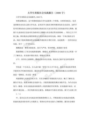 大学生寒假社会实践报告(3000字)