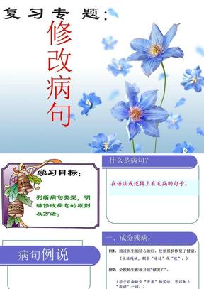 中考语文专项--修改病句课件