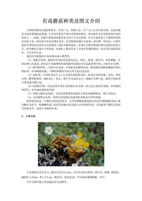 有毒蘑菇种类及图文介绍