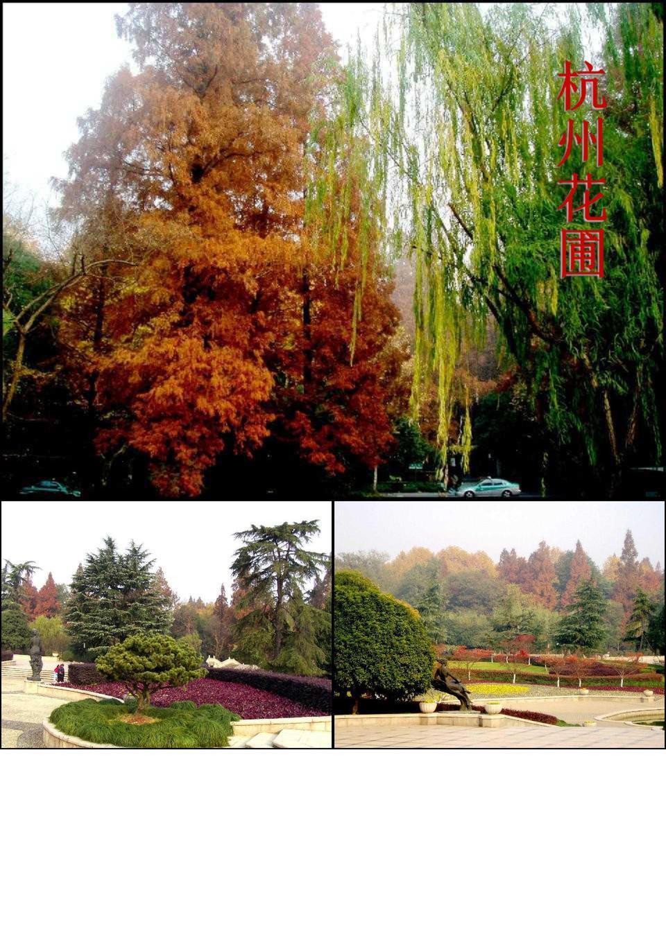秋季的杭州别样美丽