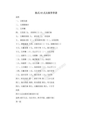 杨式48式太极拳拳谱