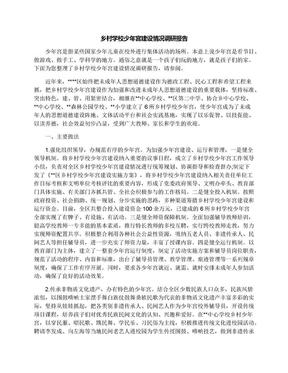 乡村学校少年宫建设情况调研报告