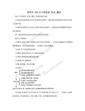 第四章  DNA分子的复制  转录  翻译