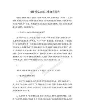 肖排村党支部自查报告