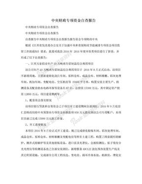 中央财政专项资金自查报告